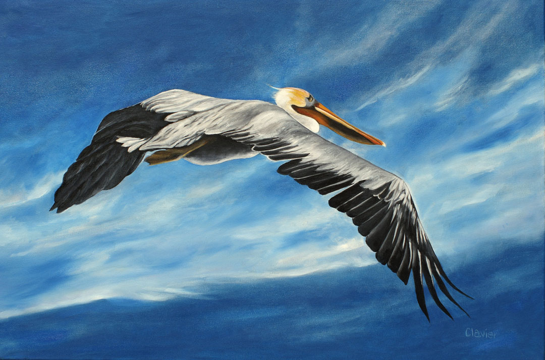 Serious Pelican painting by Ron Clavier
