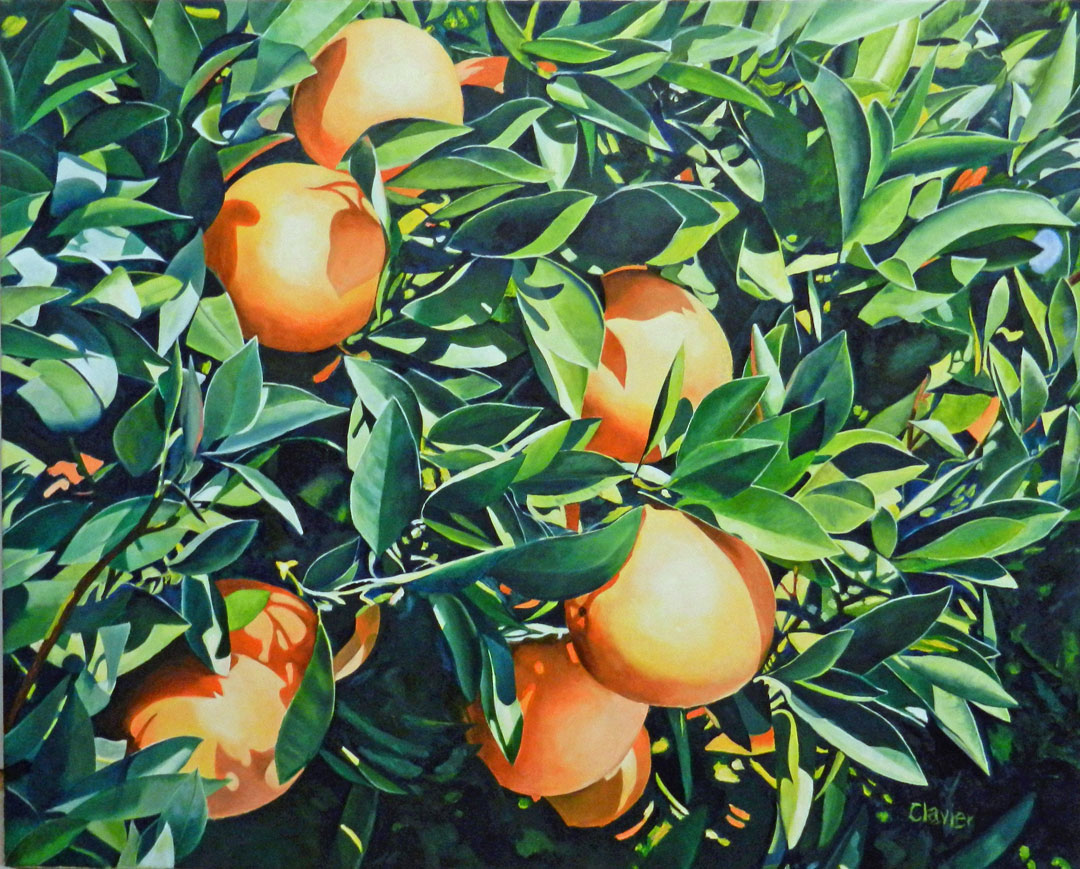 Oranges Right Off the Trees painting by Ron Clavier