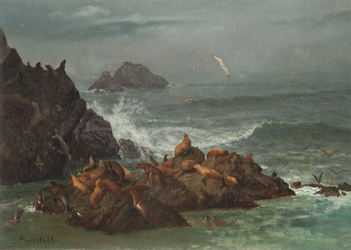 Albert Bierstadt's painting Seal Rocks shown