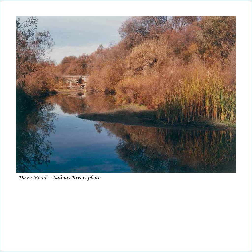 salinas-river-16