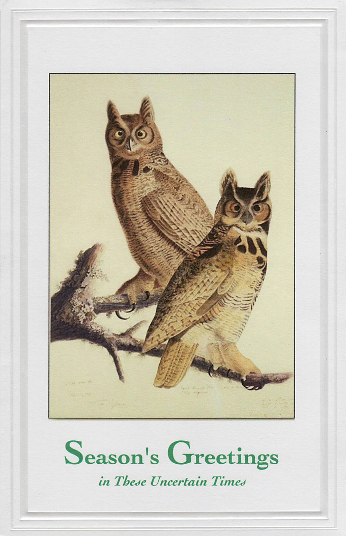 Image of great horned owls by John James Audubon