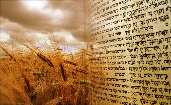 Image for Jewish festival of Shavuot
